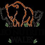 Paleo-Nutrition-Wales-NEW-2013
