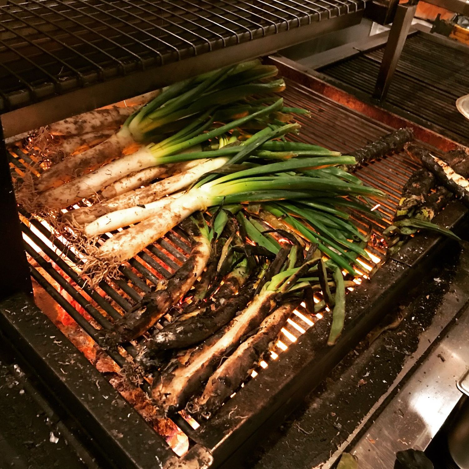 Calcots being cooked on asado grill at Asador 44 Cardiff
