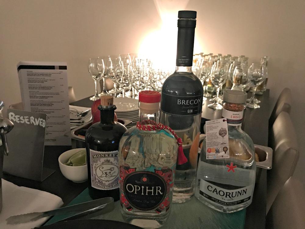 park plaza gin tasting gin bottles